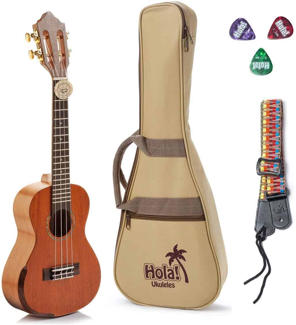 best ukulele for professionals